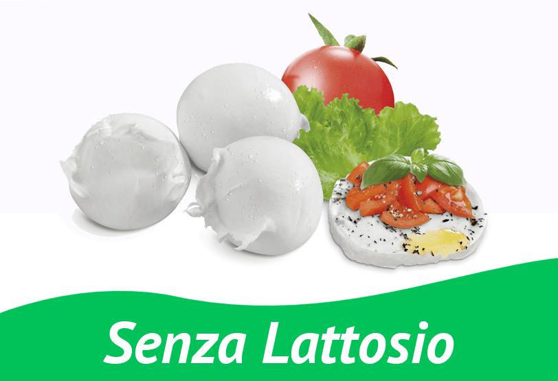 Mozzarella senza Lattosio da 125 gr